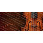 Hegedű bögre