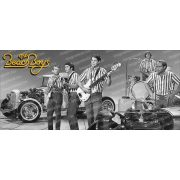 The Beach Boys bögre