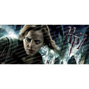 Harry Potter - Hermione bögre