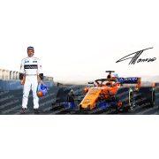 Fernando Alonso bögre
