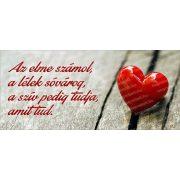 A szív mindent tud bögre