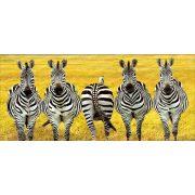 Zebra popsi bögre