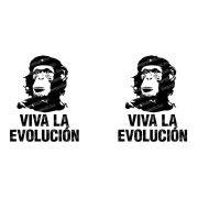 Viva la Evolucion! bögre