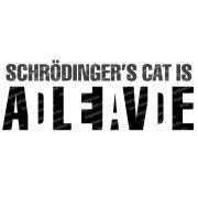 Schrödinger macskája bögre