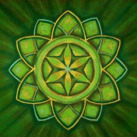 Spiritually Open Life